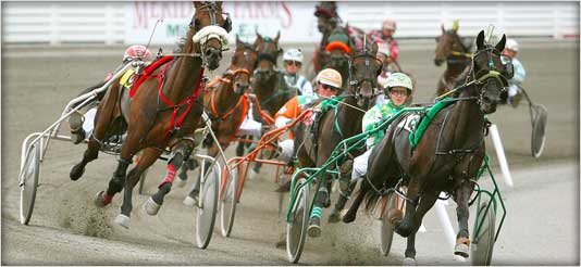 Harness Racing.jpg