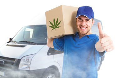 Marijuina Deliveries PEI.jpg
