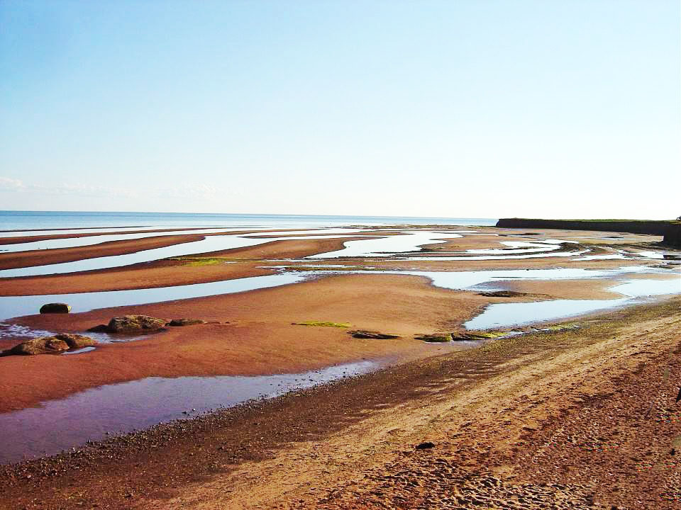 argyle-shore-beach_orig.jpg