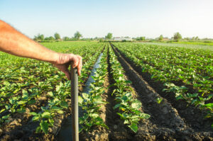 farmer-holds-his-hand-on-a-shovel-on-background-of-X4QYZE4.jpg
